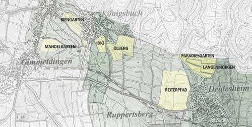 Landkarte, Anbaugebiet der Pfalz