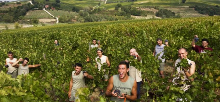 San-Patrignano_eine_autarke_Gemeinschaft